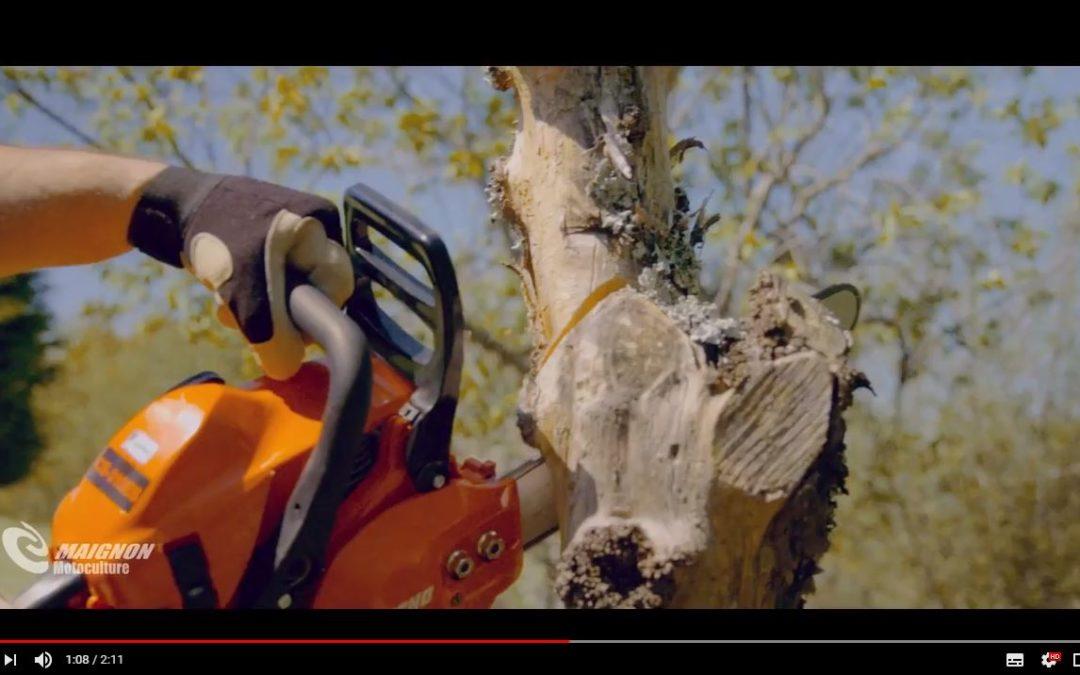 Maignon Motoculture vous présente la tronçonneuse pour tous les jardiniers : la tronçonneuse ECHO CS-310ES